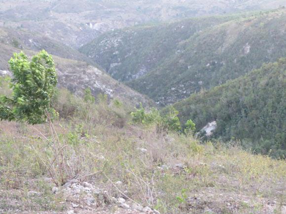 Vol-Haiti-20