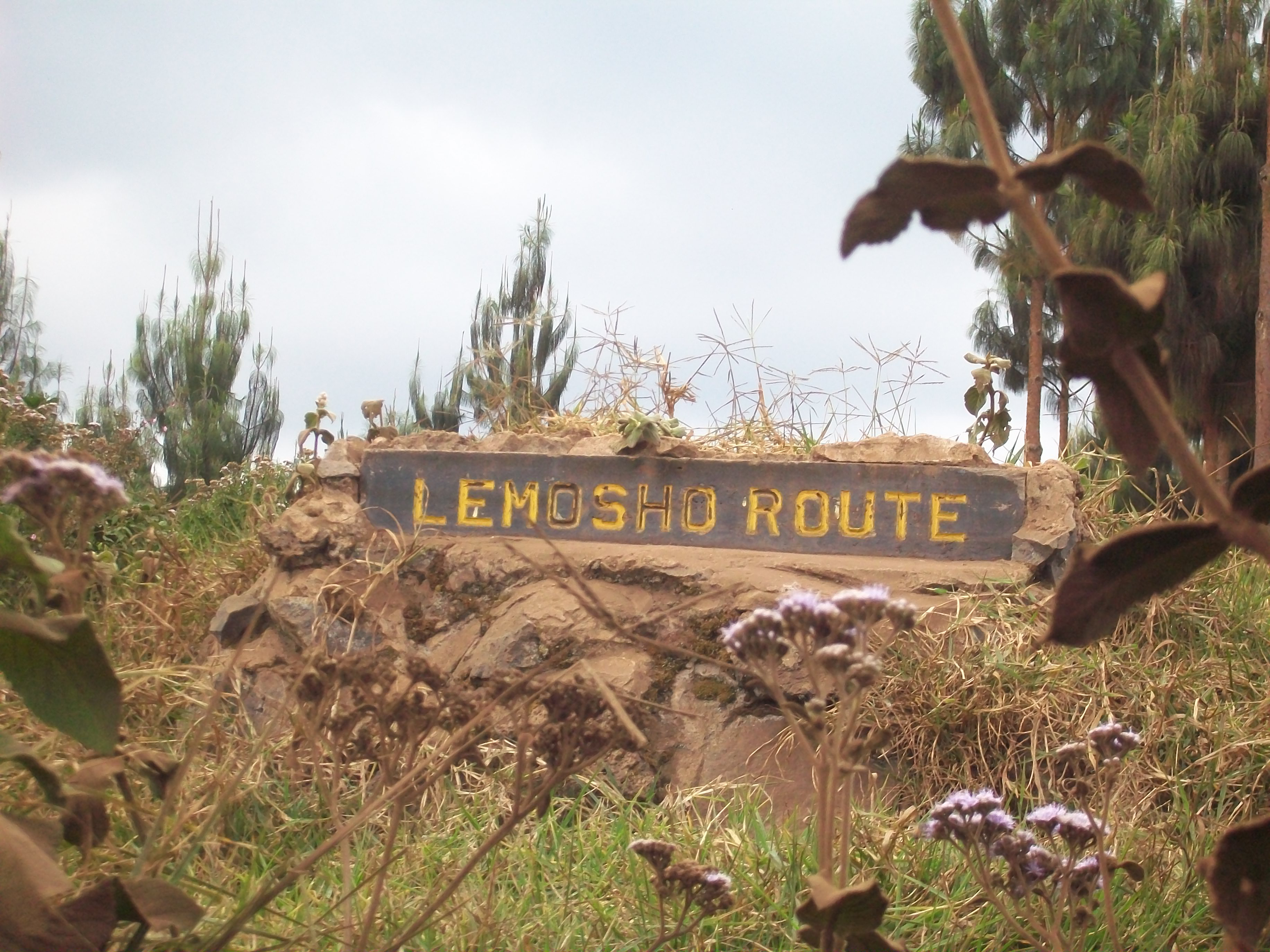 Day 1 To Forest Camp kili125 Lemosho Route Sign